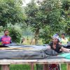 image 8 min scaled Societe Maitea - Congo