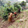 image 9 min Societe Maitea - Congo