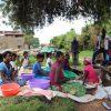 image001 min scaled Societe Maitea - Congo